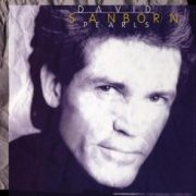 David Sanborn Try a Little Tenderness