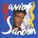 David Sanborn The Dream